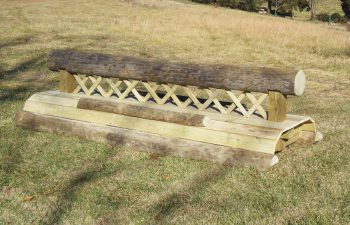 Lattice Log